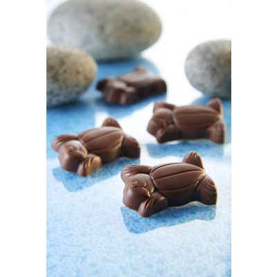 Beautiful Malaysia - Sea Turtle Almond Chocolate 180g